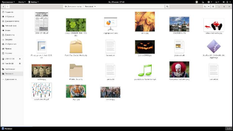 Разблокированное Постоянное хранилище Tails с рабочими файлами